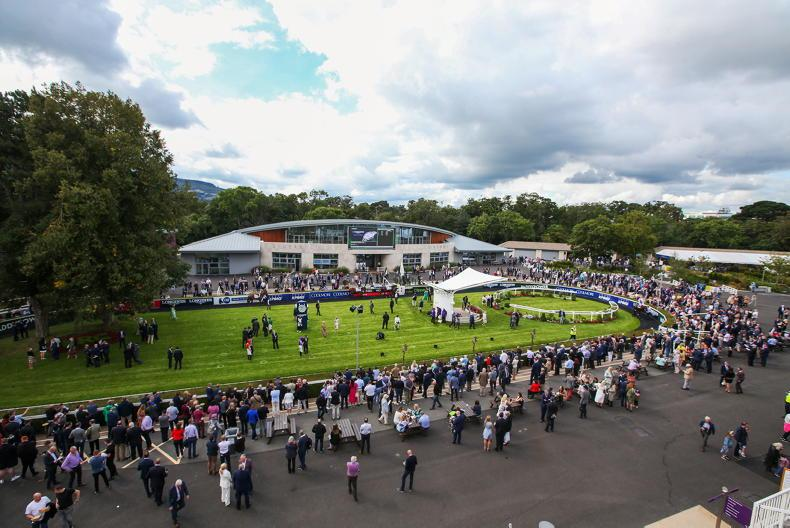 NEWS: Leopardstown and The Curragh upbeat for remaining fixtures following ICW