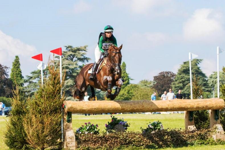 EVENTING: Berry shines at Blenheim