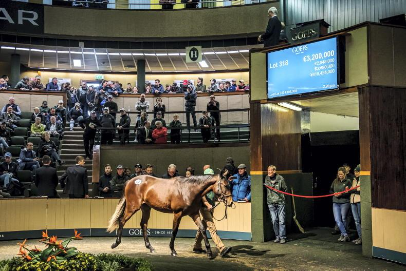 SALES: A Million reasons to go to Goffs next week