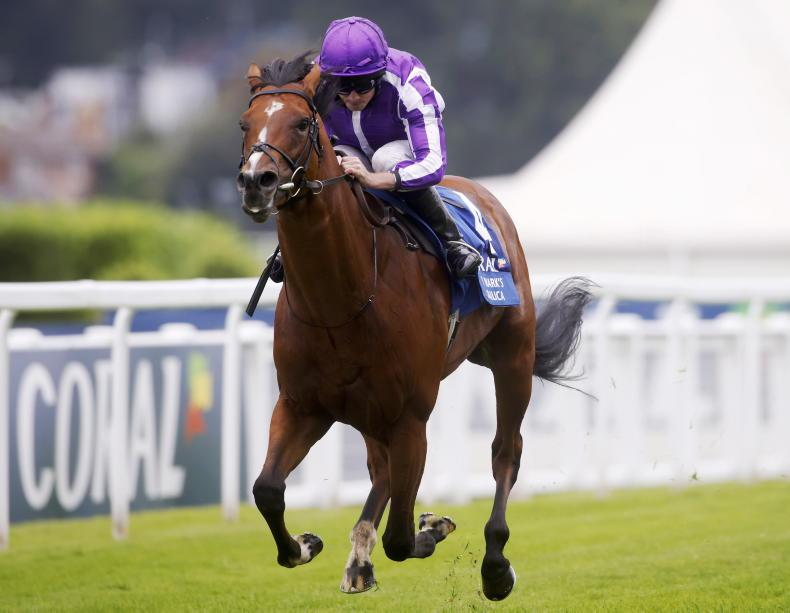 Plans on hold for St Mark's Basilica after Leopardstown success