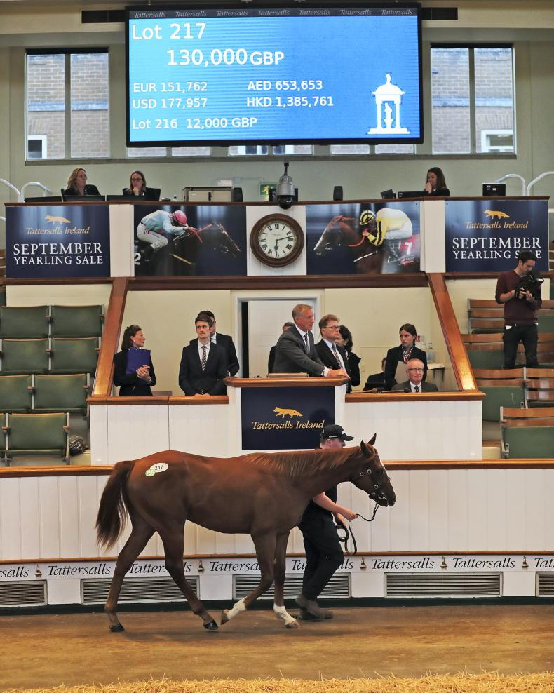 SALES: Strong start to 'Fairyhouse' sale in Newmarket