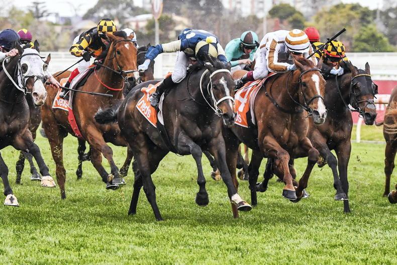 AUSTRALIA: Emotional day for jockey Daniel Moor