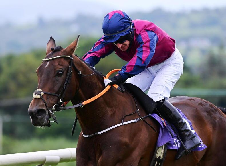 LISTOWEL SATURDAY: Don't underestimate Rippon for in-form Ryan in Charlie Chute