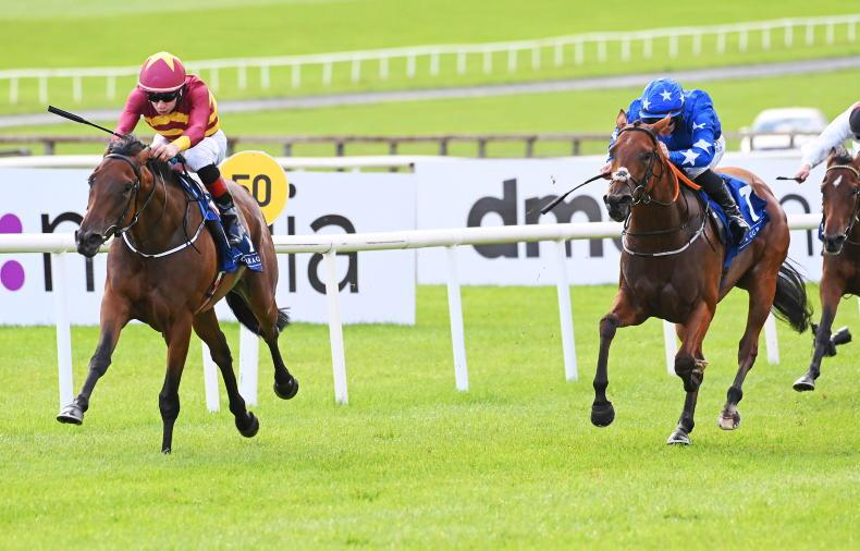 CURRAGH SUNDAY: Back Cromwell's Sunset to shine in Weld Park
