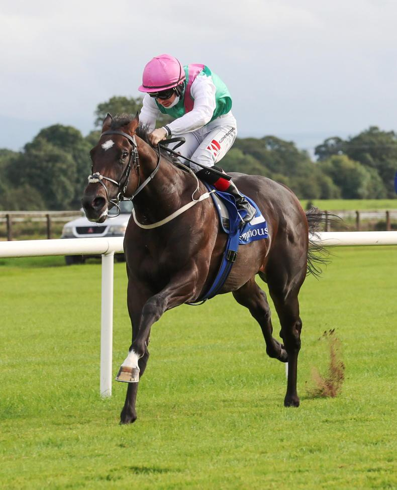 BREDEING INSIGHTS: A juvenile bonanza as potential stars emerge