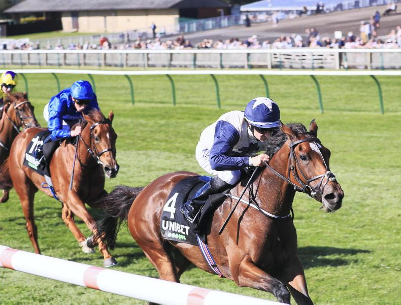 NEWMARKET FRIDAY: Jessica Harrington to the fore again