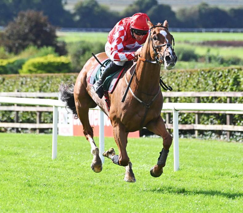 NAVAN SATURDAY: Davy back with a win as Gordon scores treble at home track