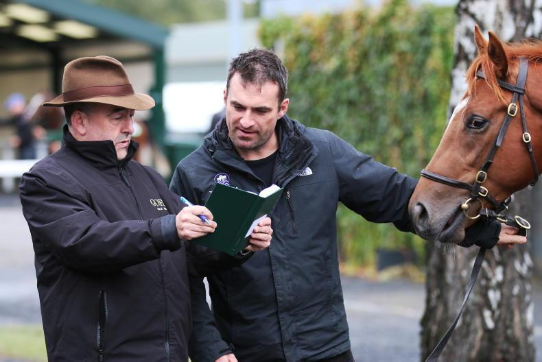 GOFFS ORBY SALE IN PHOTOS: Pictured at Goffs this week