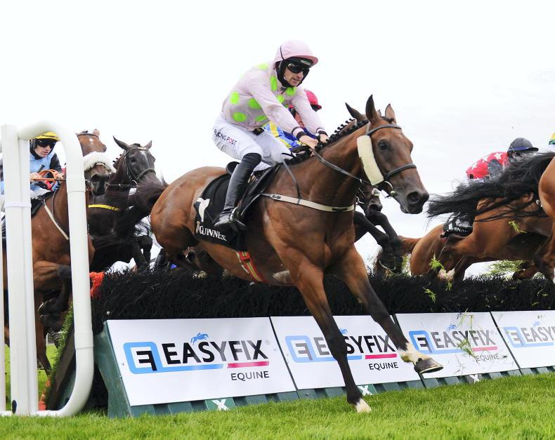 TIPPERARY SUNDAY: Stick with Saldier to continue his rise back up the ranks
