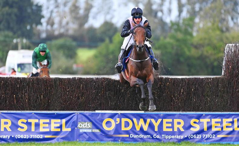 TIPPERARY SUNDAY: Smooth Gin brings Power back with a win