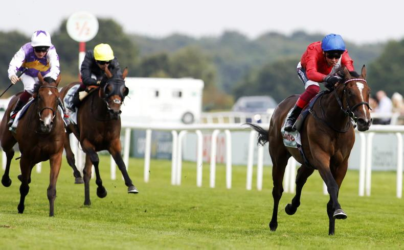 Unbeaten Inspiral to face eight in Fillies' Mile