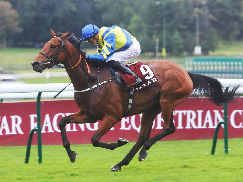 ANDY BATE: Trueshan revelled conditions
