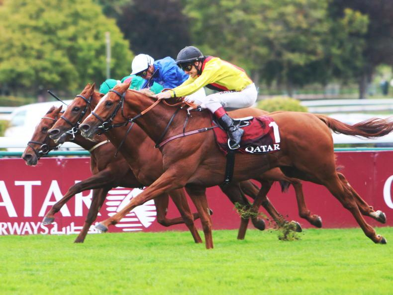 ANDY BATE: Torquator Tasso finds that extra gear