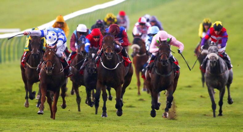 BRITISH PREVIEW: Donn McClean finds a 12/1 shot who makes a lot of appeal