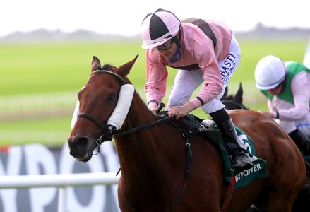 Line Out is Irish Cesarewitch hero for Kiely and Foley