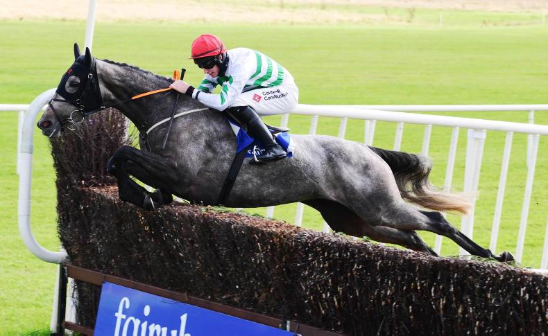 FAIRYHOUSE SATURDAY: Free-flowing Riviere D'Etel a great 'leaper'