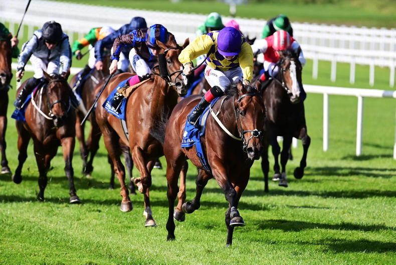 CURRAGH SUNDAY: Keane hits historic total