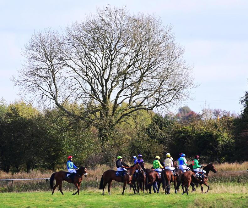 POINT-TO-POINT PICTURE DESK: Moira and Loughrea action