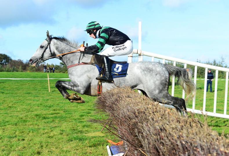 LOUGHREA SUNDAY: Bieffes blazes a trail to win at Loughrea