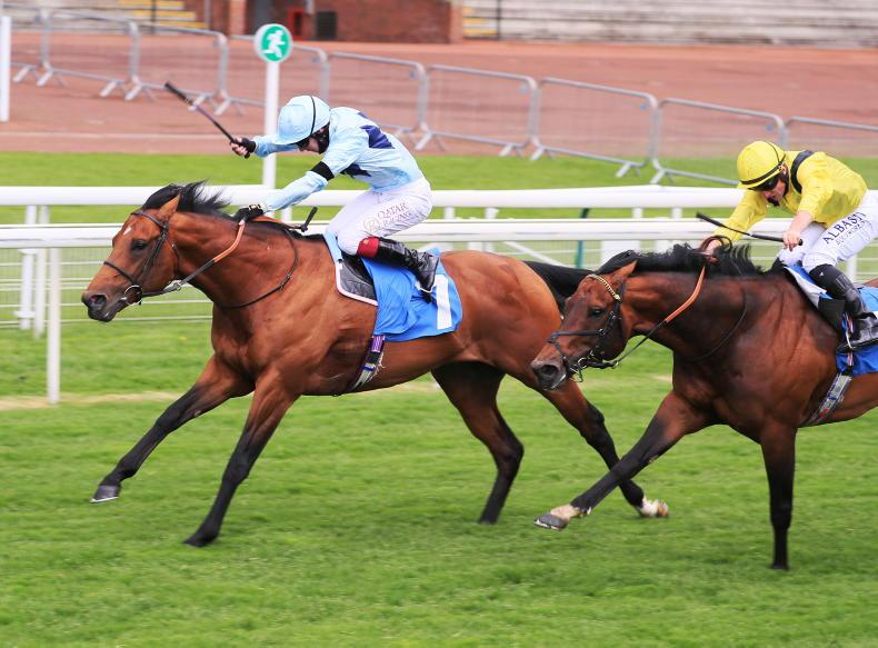 BREEDING INSIGHTS: Stallion sales, retirements and moves