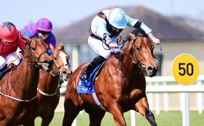 LEOPARDSTOWN SATURDAY: Go with Glounthaune to get back to winning ways