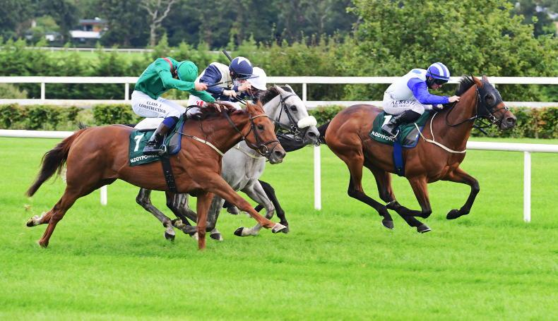 NAAS SUNDAY: Meade's Lady can take good opportunity to land lucrative prize