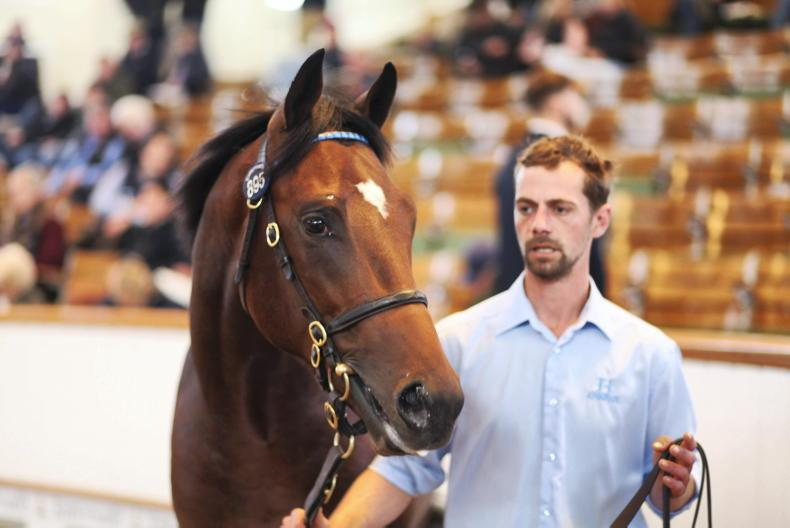 TATTERSALLS OCTOBER YEARLING SALE BOOK 2: Kingman rules as sale records soar