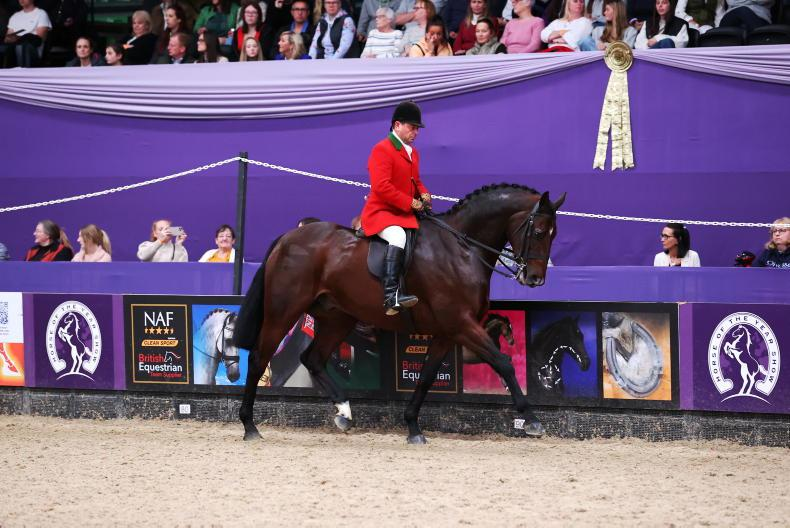 NEWS: HOYS honour is 'icing on the cake' for Jones