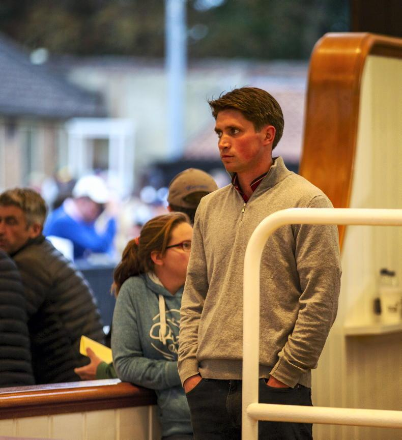 TATTERSALLS OCTOBER YEARLING SALE BOOK 3: Sale momentum carries on down the line