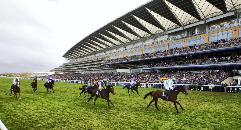 Ascot officials can hardly contain excitement at prospect of stellar Champions Day