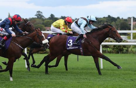Glounthaune gives immediate boost to Dewhurst form