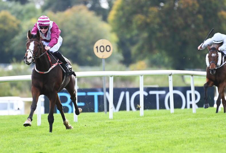 GOWRAN PARK MONDAY: Secret Vision finds the easy route