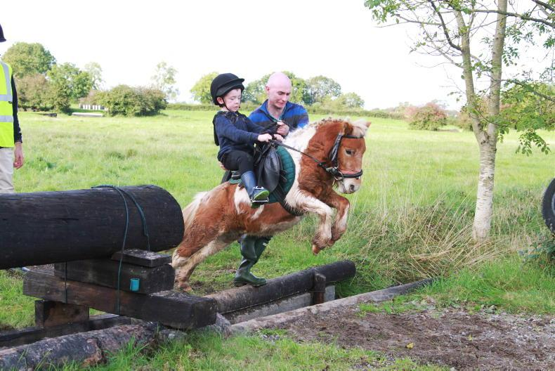 PONY TALES: Almost 300 join Limerick Harriers fun ride