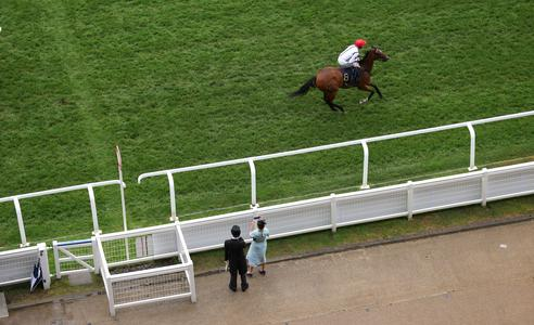 Sweet success for Bradley with Deauville one-two