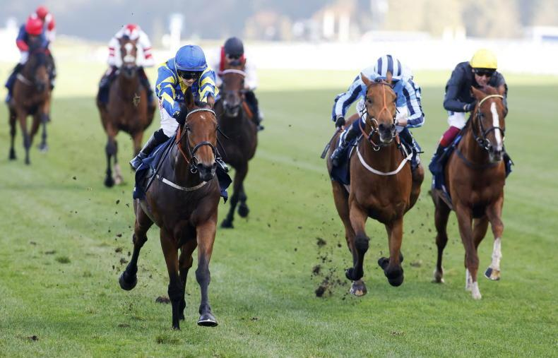 BRITAIN: Trueshan the true champ