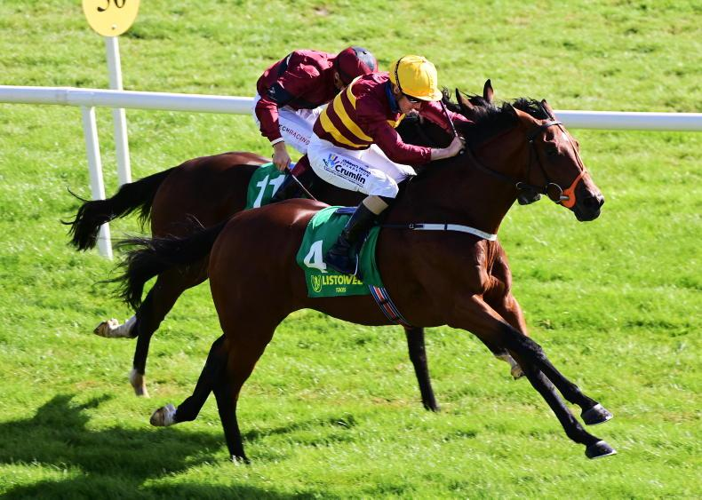 LEOPARDSTOWN SATURDAY: Twomey's colt looks the right call to Claim feature
