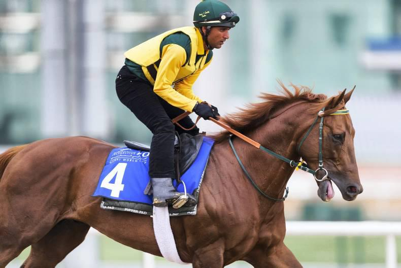DUBAI WORLD CUP: Big race needs California Chrome to win