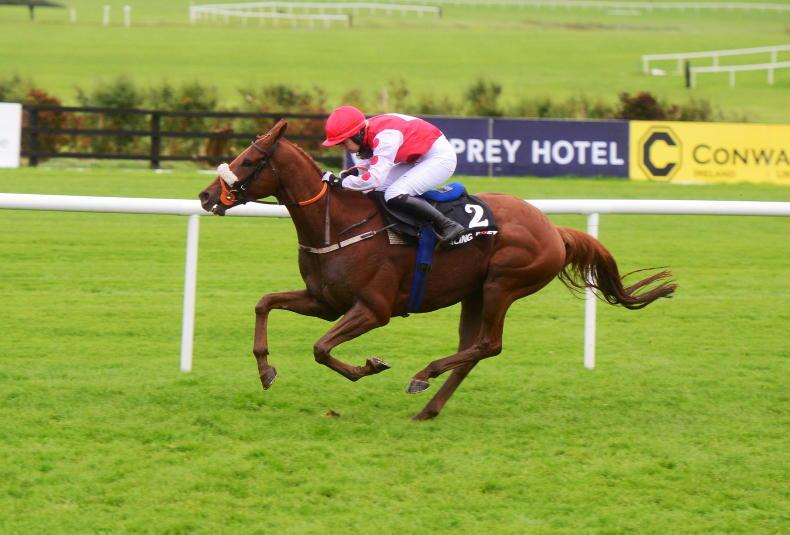 GALWAY SATURDAY: Absolute Mustard, back Colonel to get off the mark in Ballybrit