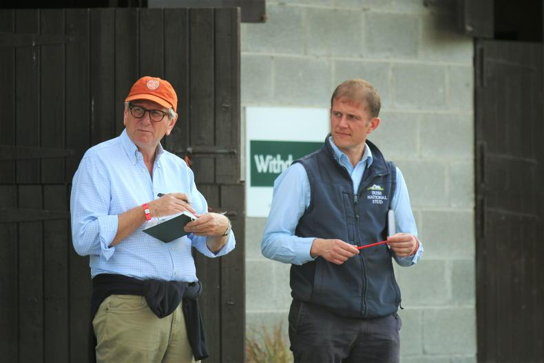 BREEDING INSIGHTS: Beale's foresight pays dividend
