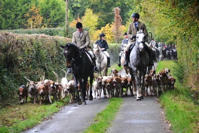 NEWS: Hunting set to jump last insurance hurdle