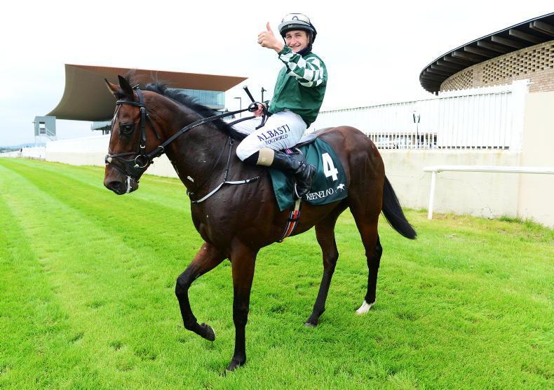 NEWS: Lucky Vega to stand at Irish National Stud