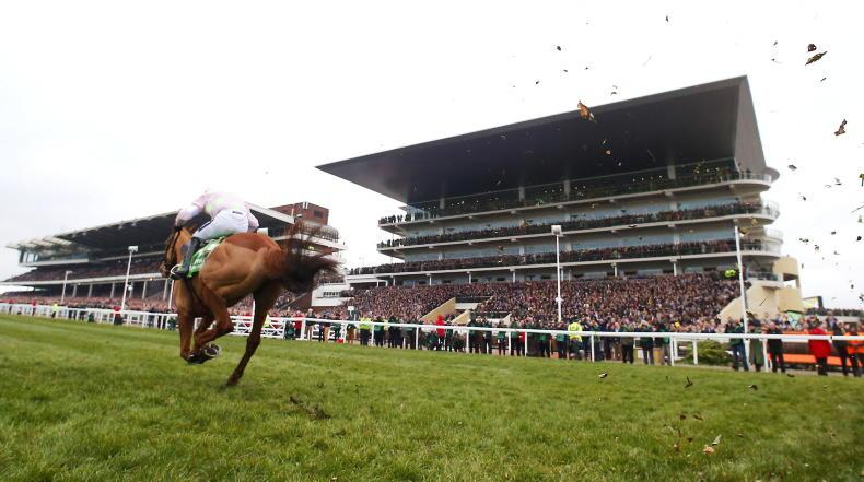 RORY DELARGY: Back this Cheltenham specialist to go in again for in-form yard