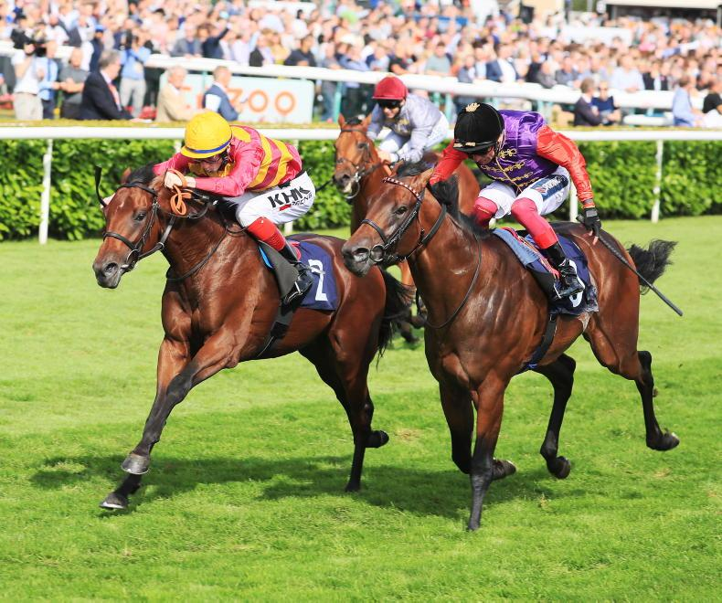 DONN MCCLEAN: Luxembourg opposed by colt with high-class course form