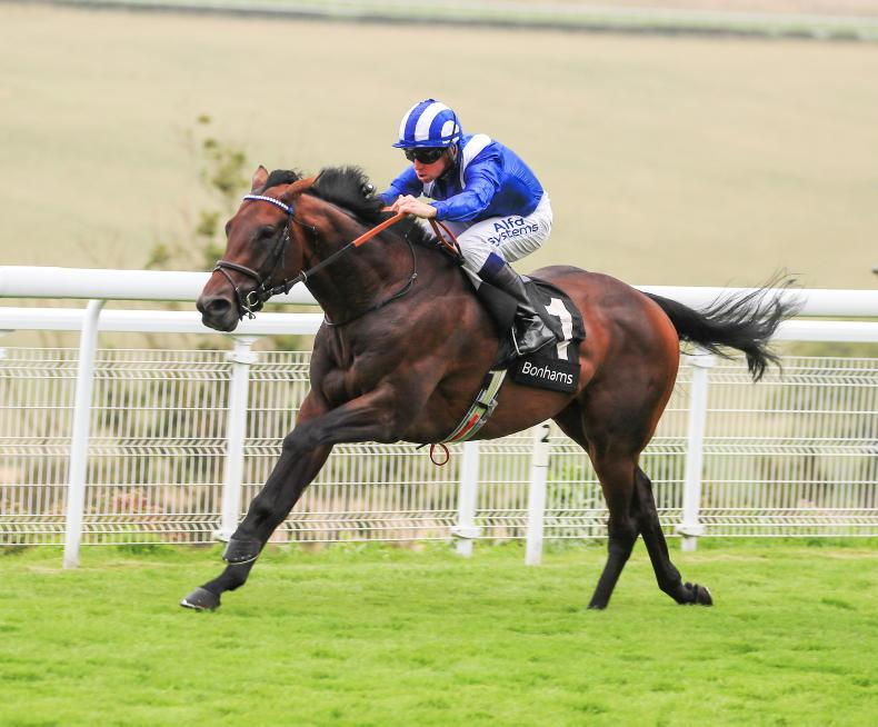 ANDY BATE: Baaeed best with 'exhilarating' speed