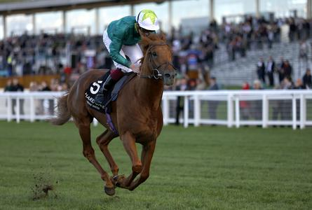 Scope strikes for Beckett and Hornby in Prix Royal-Oak