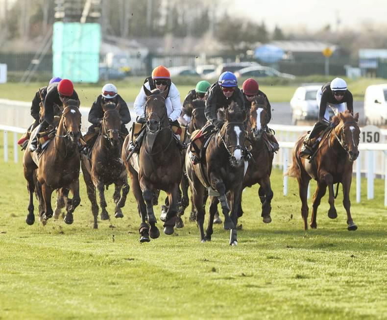 Ballydoyle to work 70 horses after racing