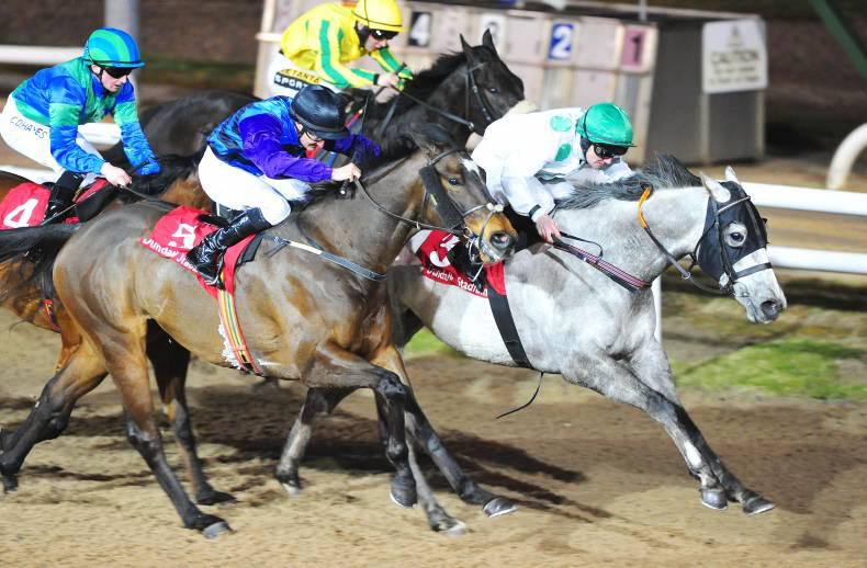DUNDALK FRIDAY: Togoville takes his score to three