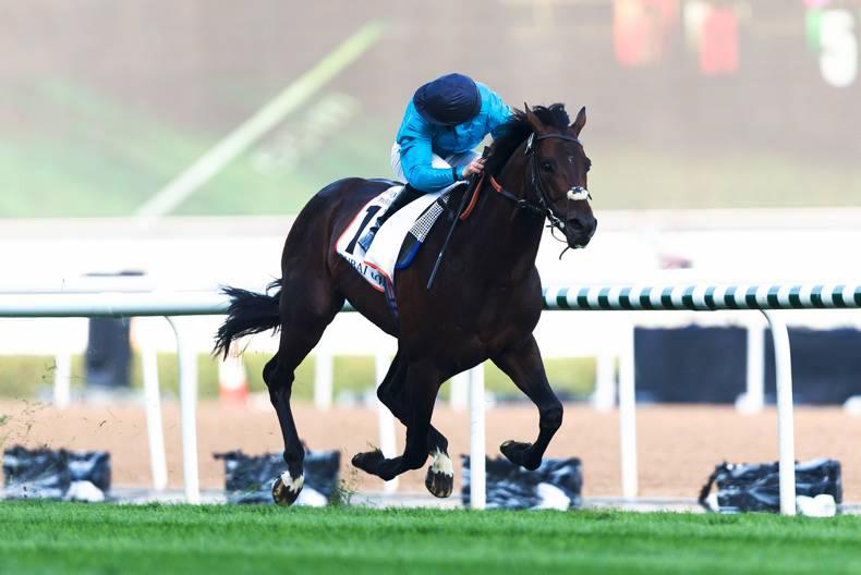DUBAI: Panther has perfect pace