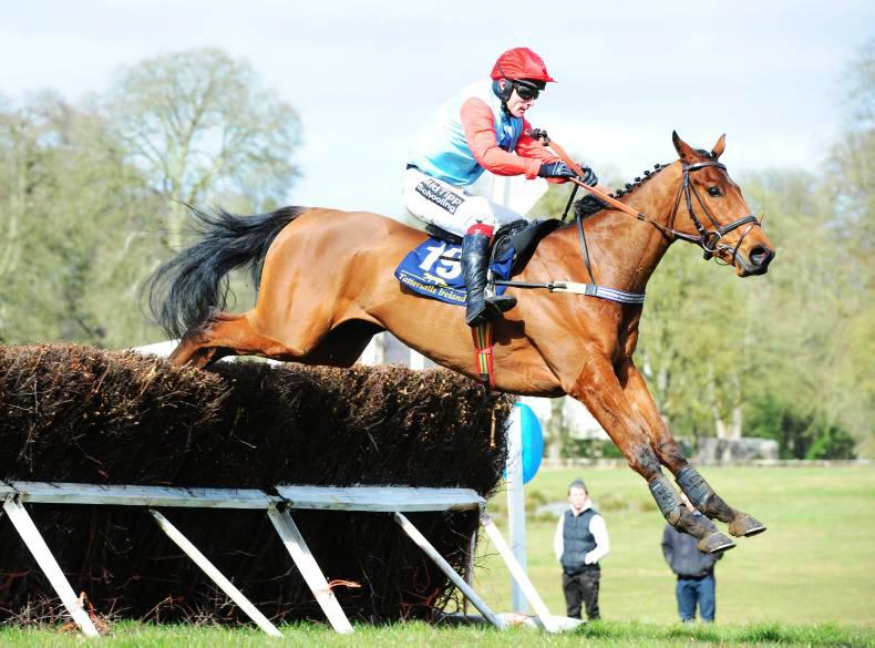 Over 60 horses listed in Brightwells' Cheltenham catalogue