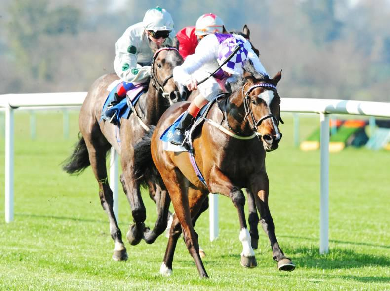 TIPPERARY THURSDAY: O'Brien filly could have glittering future